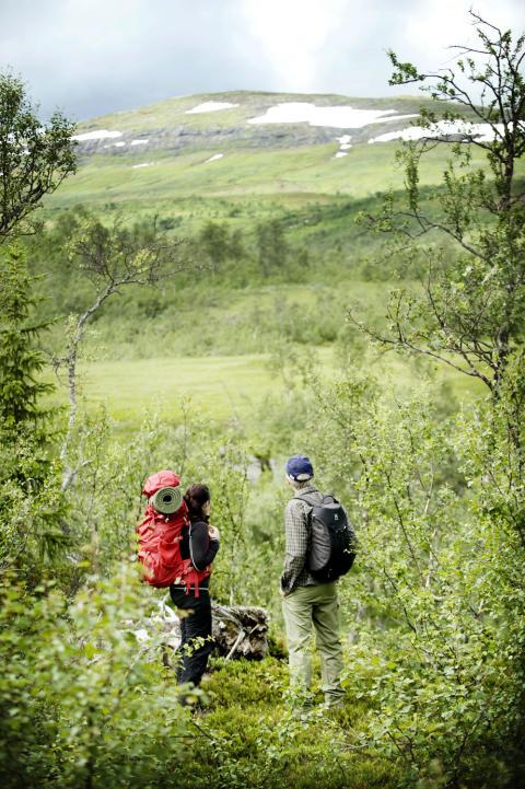 Positiva siffror för sommaren i Jämtland Härjedalen
