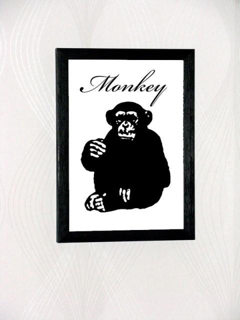 monkey-med-ram