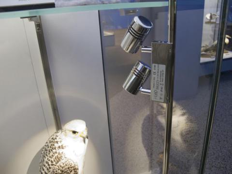 Fox Design presenterar ljus på Polarutställningen, Naturhistoriska Riksmuseet.
