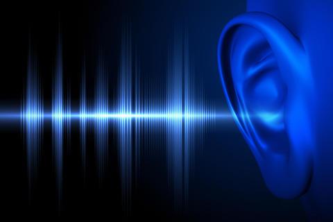 Aivoterveyden asiantuntijat innostuivat hiljaisuudesta