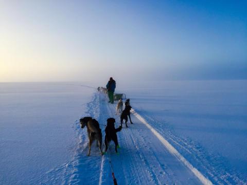 2017: Abenteuerreise nach Schwedisch Lappland ab € 1299,- pro Person