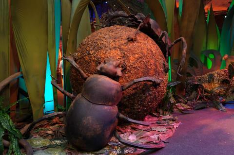 Megabugs Return! (Foto - Singapore Tourism Board)