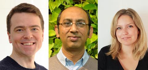 Yngre forskare belönas för insatser inom det neurologiska och försäkringsmedicinska området