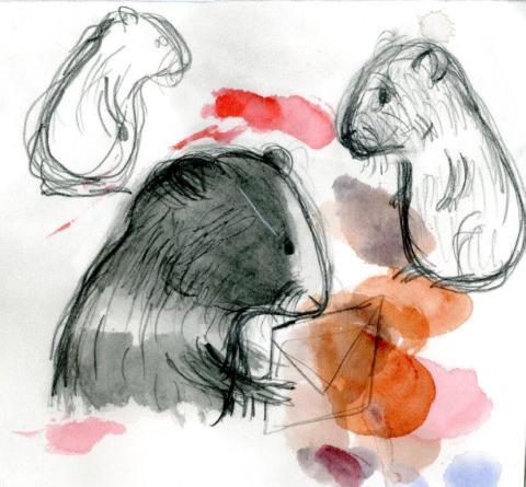 Den Hemliga Konsten - pressbild Anna-Clara Tidholm