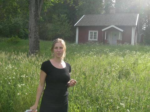 Det svenska torpet: En överlevare