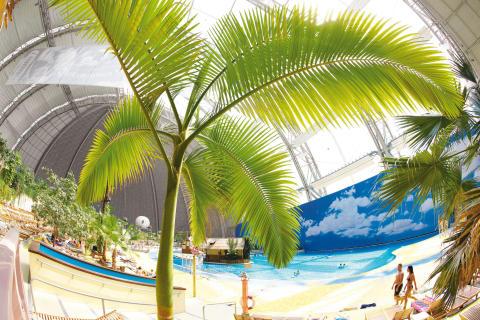 Tropical Islands palmer og sandstrand
