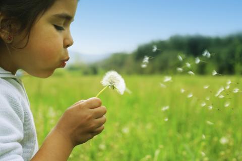Inspecta hjälper till att sprida Natur & Miljöboken till skolan