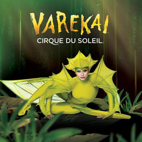 Cirque du Soleils Varekai till Sverige för första gången!