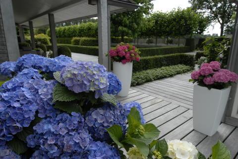 Forever&Ever - trädgårdstips till altanen - Forever&Ever
