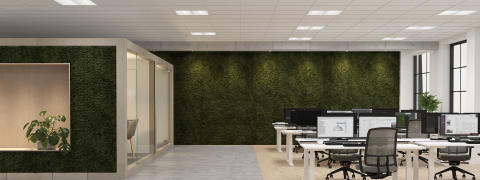 Flexible Lighting Control For Sustainable Offices