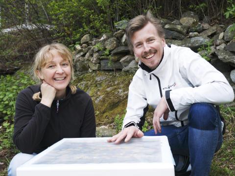 Kocken Paul Svensson har fått 40.000 husdjur