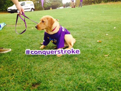 Poppy shows support of 'Together We Can Conquer Stroke' at Resolution Run in Glasgow