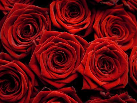 Alla hjärtans dag - vi tjuvstartar och firar redan från lördag!