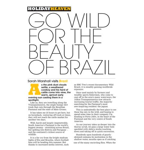 Go wild for the beauty of Brazil