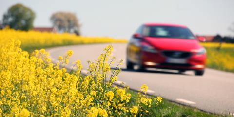 15869461-yellow-rapeseed-fields-and-a-red-car-in-sweden