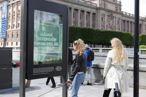 Motbjudande akvarium ska få beslutsfattare att rädda Östersjön