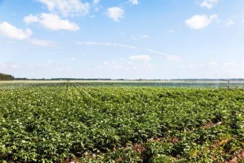 37 miljoner till projekt för att  anpassa jordbruket till ett föränderligt klimat