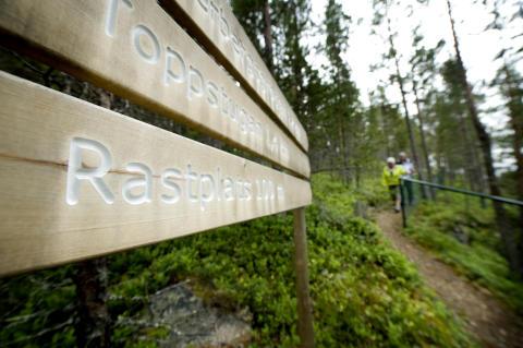 Hiking, Jämtland Härjedalen