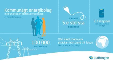 Sveriges 5:e största elnätsbolag berättar om hur de använder intelligenta analyser från dLab.