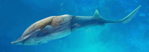Life restoration of Qilinyu