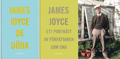 """the use of allusions in james joyces a portrait of the artist as a young man 11orientalism in james joyces araby  themes and allusions in james joyce's""""araby"""" comments on the  a portrait of the artist as a young man."""