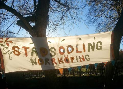 Urban odling växer i Norrköping