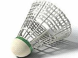 Let's play badminton!
