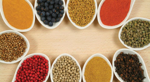 New Profitable Report on Food Flavors Market by 2019-2027 Focusing on Key Players Givaudan, International Flavors & Fragrances Inc., Mane, ROBERTET SA, Sensient Colors LLC, Symrise, T.HASEGAWA CO. and Others