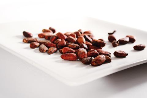 Chokopedia.se – ett uppslagsverk för chokladälskare
