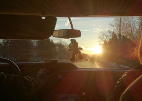 Eläintörmäysvahingot kasvussa: Etelä-Suomessa entistä enemmän peurakolareita