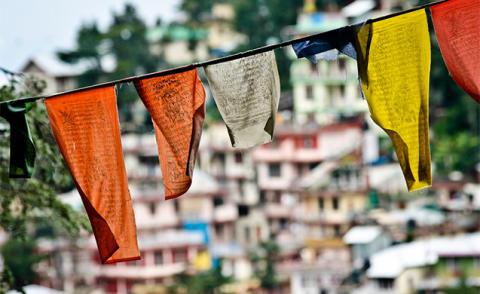 En praktikants erfarenheter från ett tibetanskt exil-samhälle i Indien