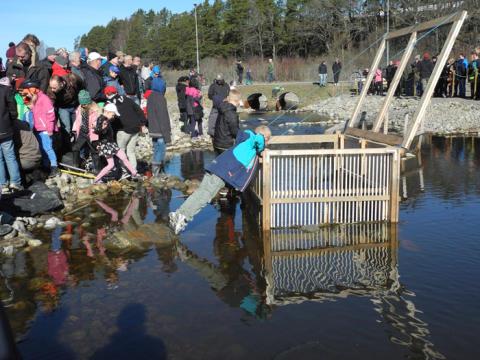 Kung Carl XVI Gustaf inviger Hemmesta sjöäng