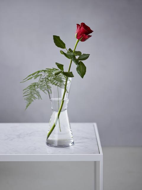 Rød rose valentine