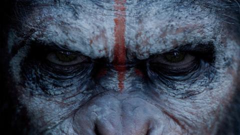 Tv.nu - Veckans trailerlista: Apornas planet, Seth Macfarlane och Gotham City