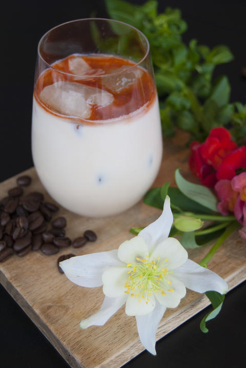 Baileys Ice Coffee Horchata