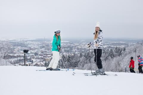 Vinter i Skövde