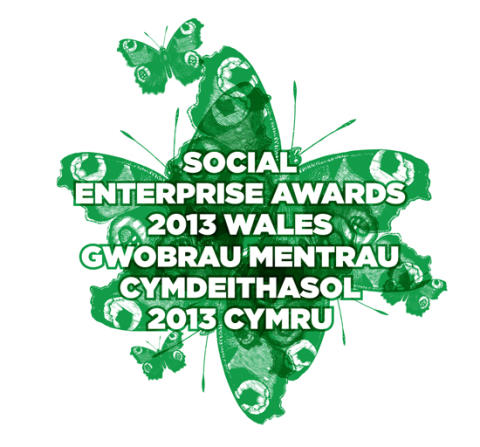 Who will be recognised for their contribution to social enterprise development in 2013?