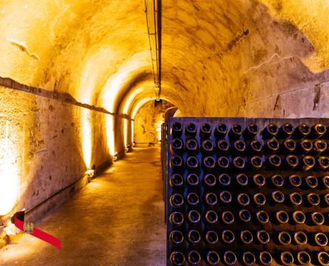 Mumm Cellar