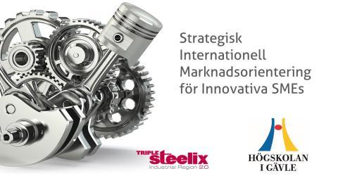 Nytt utvecklingsprogram lanseras för innovativa små och medelstora bolag för att snabb och effektivt nå ut på den internationella marknaden