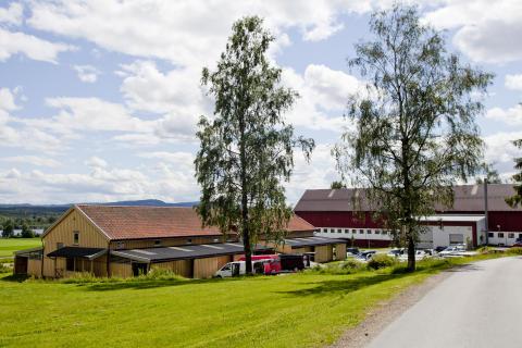 Politihøgskolen Kongsvinger_2