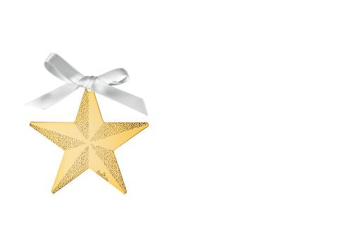 R_Silver_Collection_Christmas_Gold_Star_8_cm