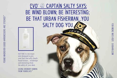 Evo Salty Dog Ad