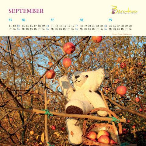 Mit Bärenherz durchs Jahr -  Der neue Bärenherz-Kalender ist da