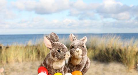 Osterwochen im Ostsee Resort Damp