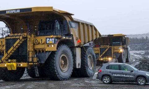 Store katte i Sverige