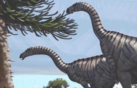 Plateosaurusen levde under Trias.