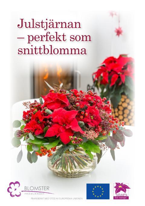 Julstjärneposter om snittblommor för egen utskrift.