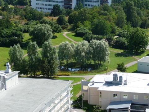 Mjärdevi Science Park - Collegiumparken
