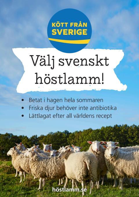 Kampanj #Höstlamm 2018, original butiksmaterial