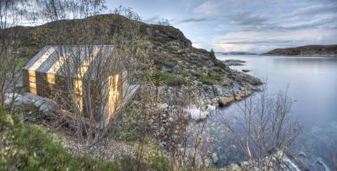Dauerhaft und nachhaltig: Neues Holz dank grüner Technologie